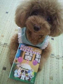 愛犬鈴ちゃん~トイプードル☆ライフスタイル~-2012073115230000.jpg