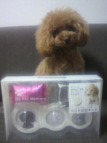 愛犬鈴ちゃん~トイプードル☆ライフスタイル~-2012080322590000.jpg