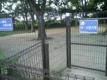 愛犬鈴ちゃん~トイプードル☆ライフスタイル~-2012080514100002.jpg