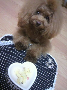 愛犬鈴ちゃん~トイプードル☆ライフスタイル~-2012111723300001.jpg