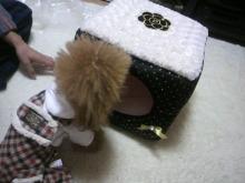 愛犬鈴ちゃん~トイプードル☆ライフスタイル~-2012112221510000.jpg