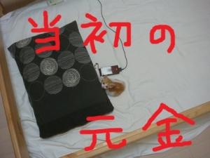 DSC02019.jpg