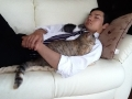 猫とお昼寝中