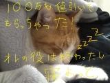 猫のいびきで、ネビキ