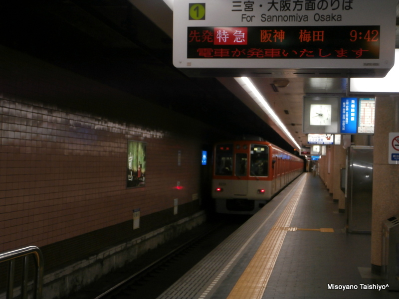 1-P5030005-001.jpg