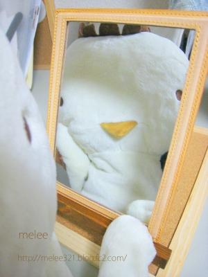 水張り 鏡 かっぱ