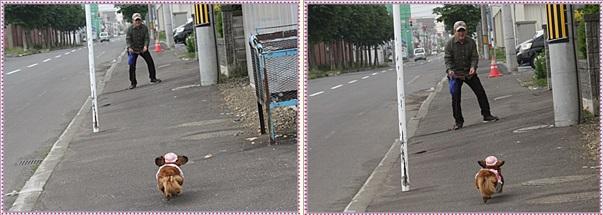 IMG_0265-tile.jpg