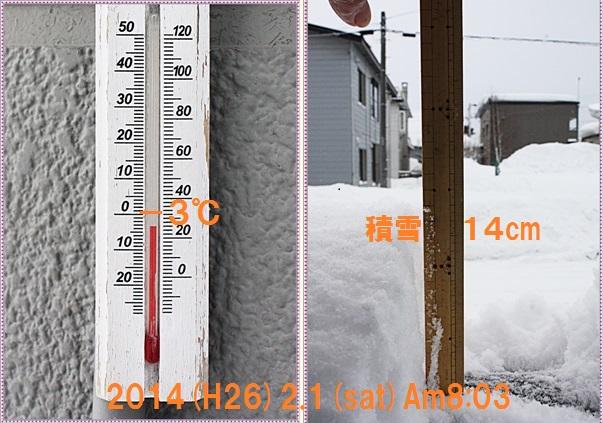 IMG_2845-tile.jpg