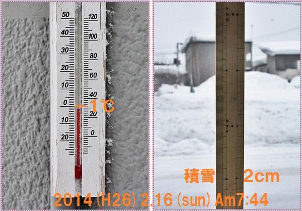 IMG_3696-tile.jpg