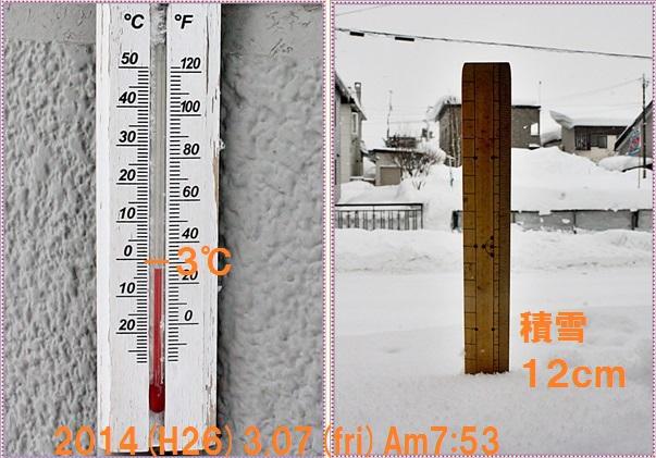 IMG_4680-tile.jpg