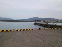 新港ジャコ2