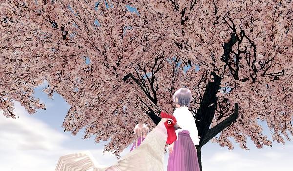 桜心中withチキン