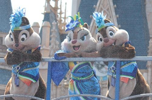 3栗鼠 (1)