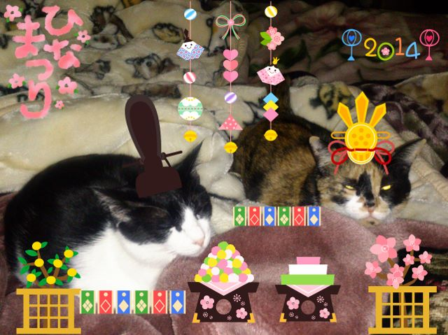 2014-03-06-18-03-42_deco (640x479)
