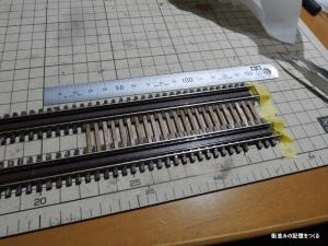 DSCN3855.jpg