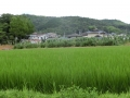 H260724 勝央町勝間田