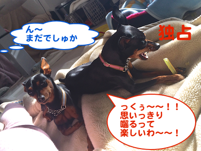 20140301-1.png