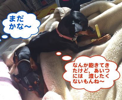 20140301-2.png
