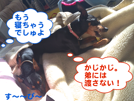 20140301-3.png