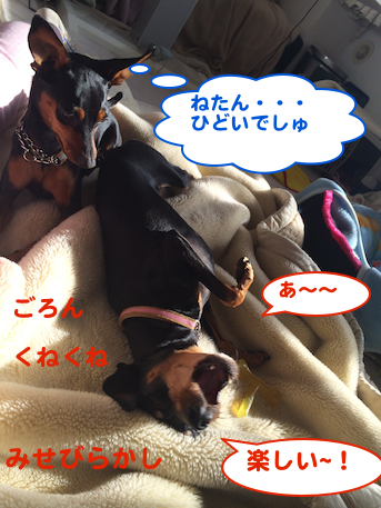 20140301-4.png