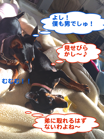 20140301-5.png