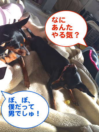 20140301-6.png