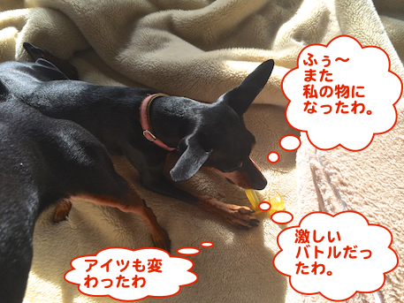 20140301-7.png