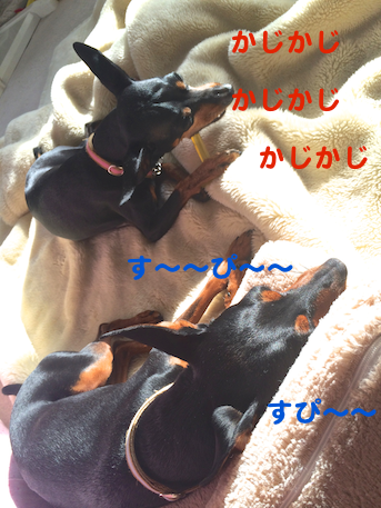 20140301-8.png