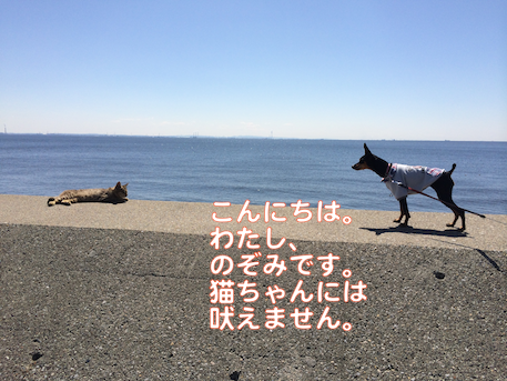 20140324-1.png