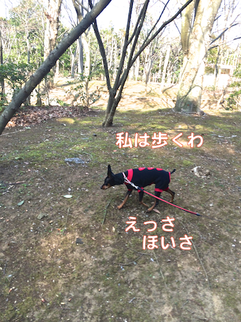 20140324-5.png