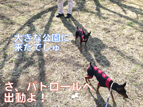 20140324-6.png