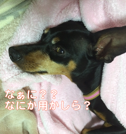 20140327.png
