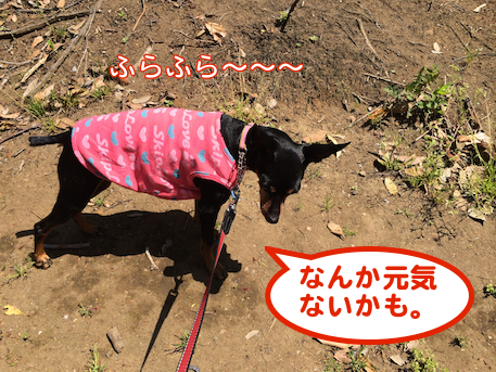 20140430-3.png