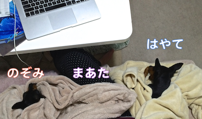 20140430-6.png