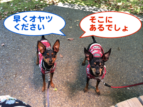 201405013-5.png