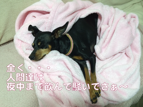 20140509-4.png