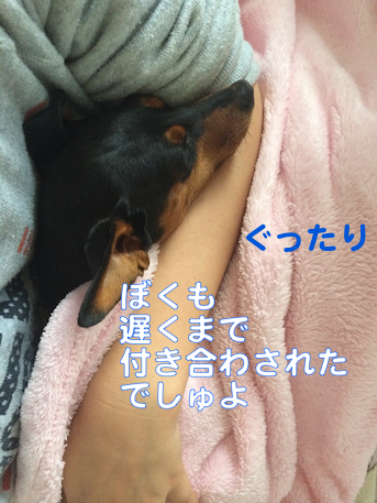 20140509-5.png