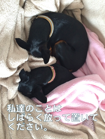 20140509-6.png