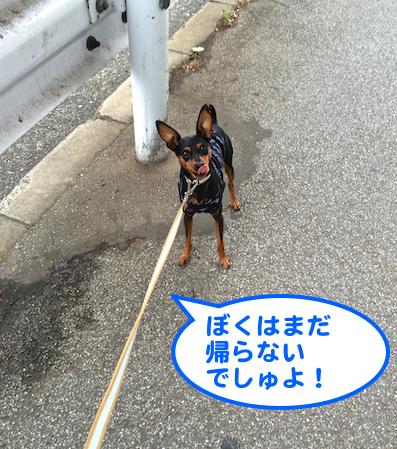 20140610-2.png