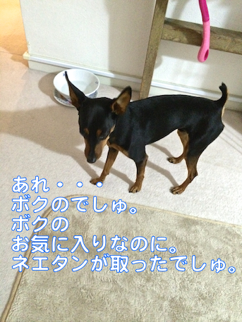 20140614-1.png