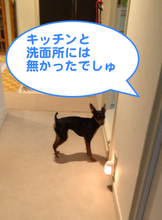 20140626-2.png