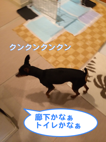 20140626-3.png