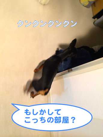20140626-4.png