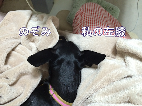 20140628-1.png