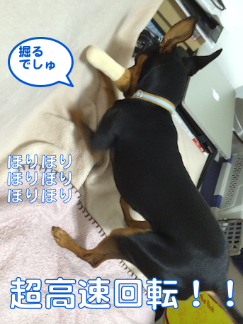 20140707-3.png
