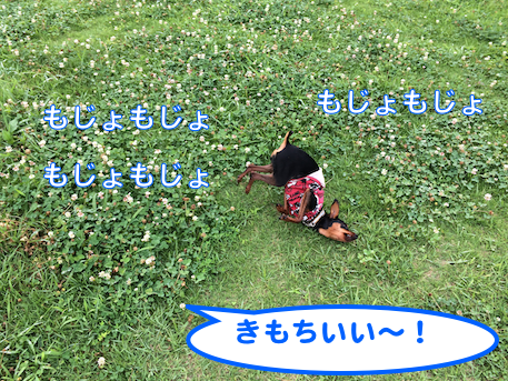 20140718-5.png