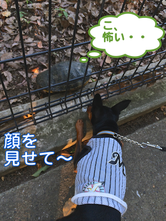 20140725-1.png