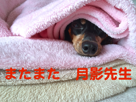 20140730-3.png