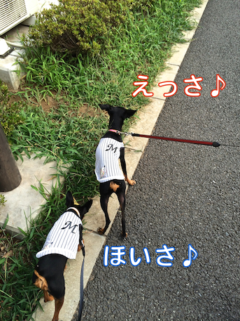 20140808-1.png