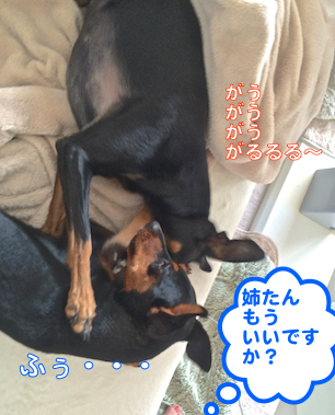 20140812-4.png